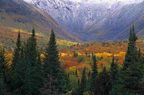 10 Best Fall Color Forest Views in the US and Canada
