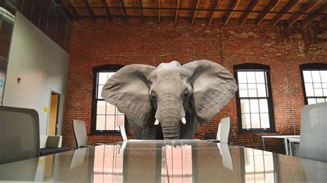 """The Three Elephants in the """"AI for IT support"""" Living Room"""